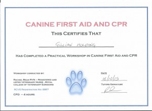 - Dog 1st aid - 2015