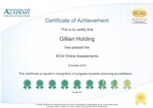 KCAI Certificate of Achievement 2016